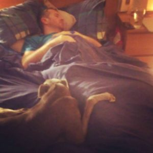 Our beloved greyhound Sir Maxelot, takes up his place as guardian and healer to his charge. Not a dog to show much emotion, this picture says more than words can convey. Love.