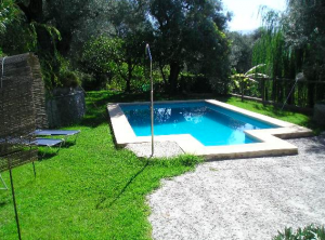 Green grass, blue pool and lovely mature trees surrounding our private garden bliss.