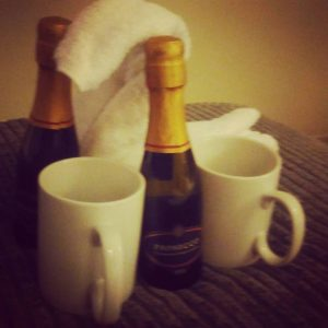 Living the dream and marvelling at the welcoming towel swans and rocking the bubbles in mugs.