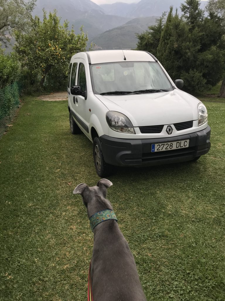 Sir Maxelot Meets Jimmy the Kangoo